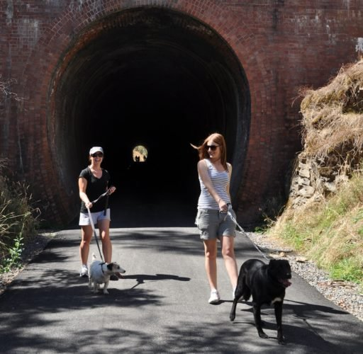 GVRT Dog walkers Cheviot Tunnel
