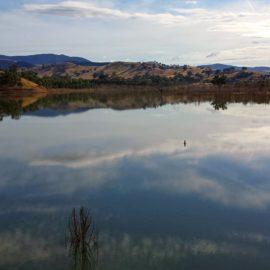 Lake Eildon